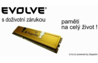 EVOLVEO 1GB SODIMM DDR II 667MHz Zeppelin GOLD (box), CL6...